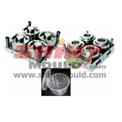 4 cavity food container mould